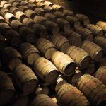 Nos conseils pour investir dans le vin !